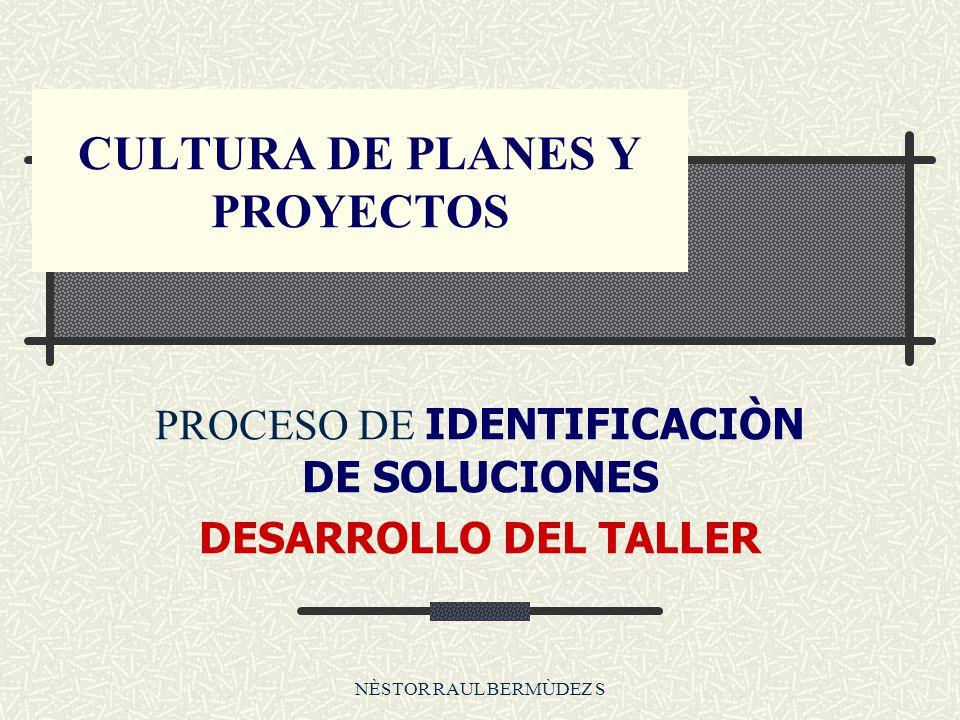 CULTURA DE PLANES Y PROYECTOS