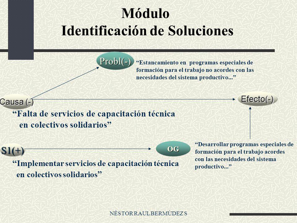 Módulo Identificación de Soluciones