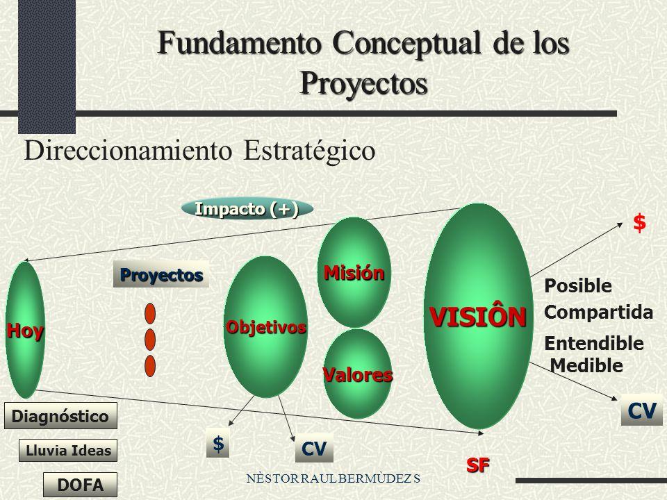 Fundamento Conceptual de los Proyectos