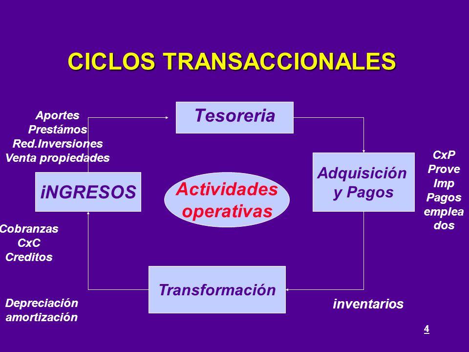 CICLOS TRANSACCIONALES