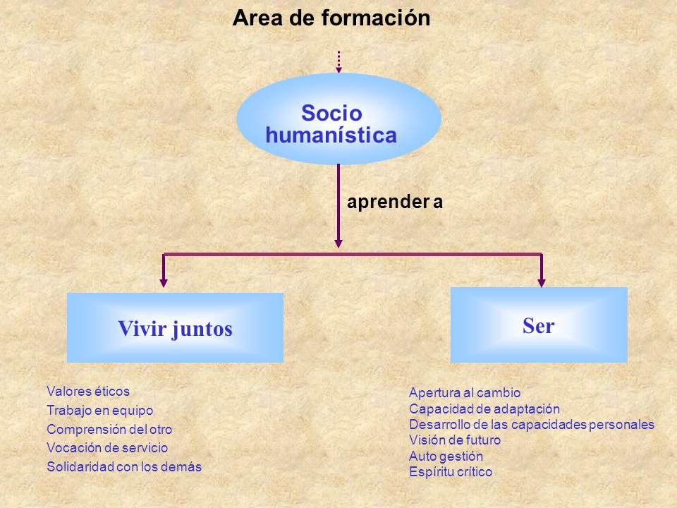 Area de formación Socio humanística Ser Vivir juntos aprender a