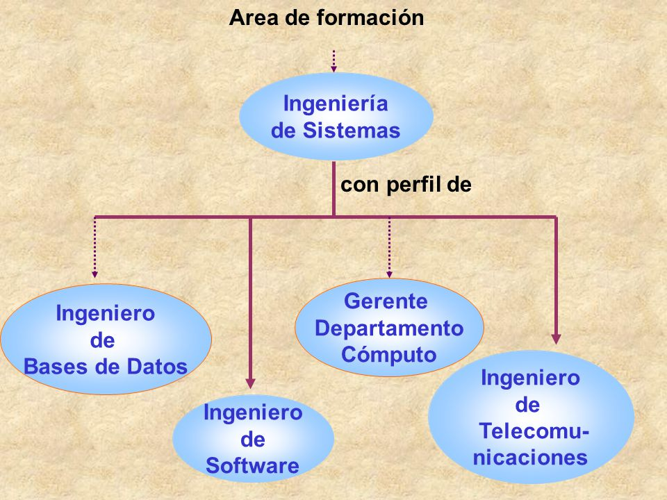 Area de formación Ingeniería. de Sistemas. con perfil de. Gerente. Departamento. Cómputo. Ingeniero.