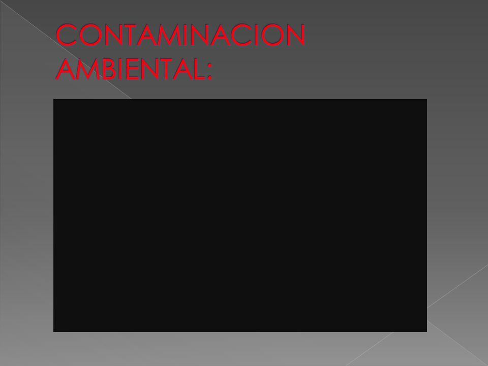 CONTAMINACION AMBIENTAL: