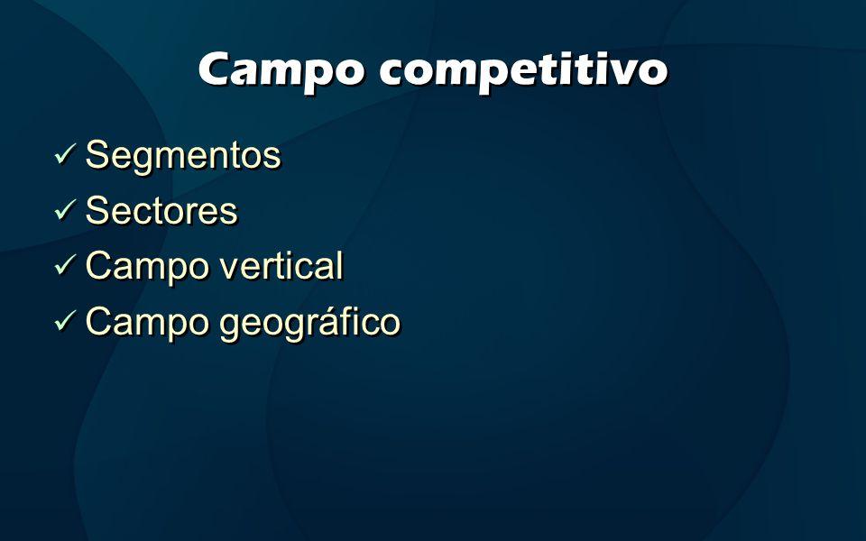Campo competitivo Segmentos Sectores Campo vertical Campo geográfico