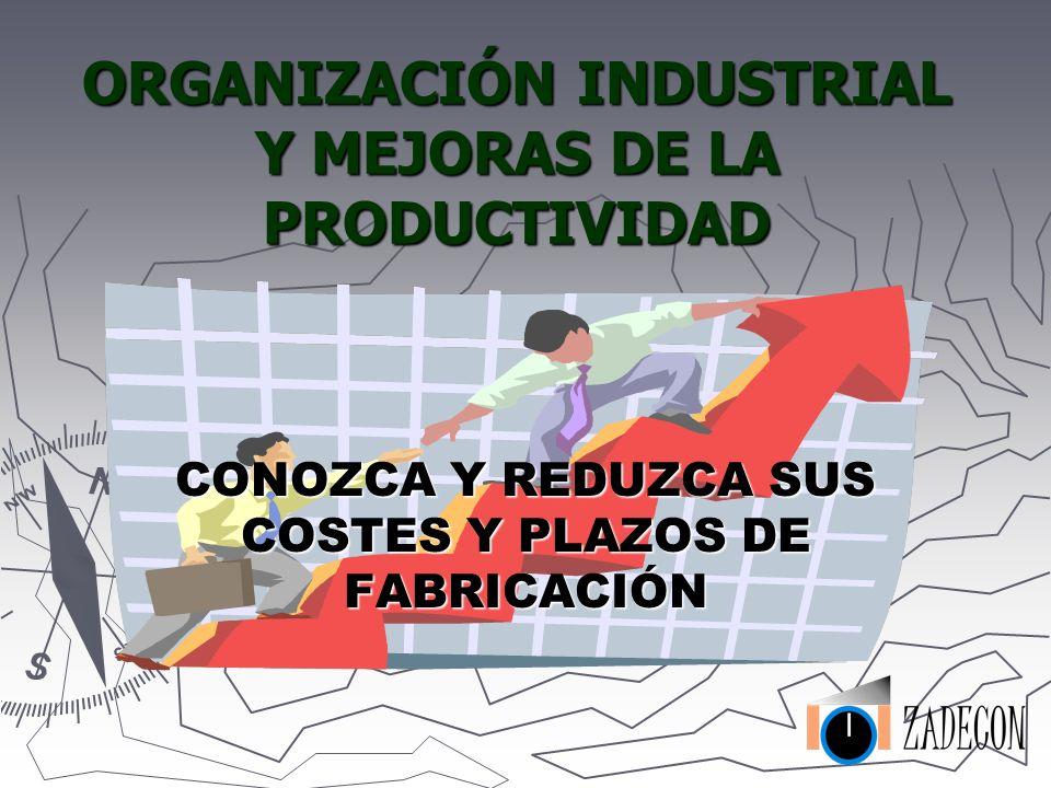 ORGANIZACIÓN INDUSTRIAL Y MEJORAS DE LA PRODUCTIVIDAD