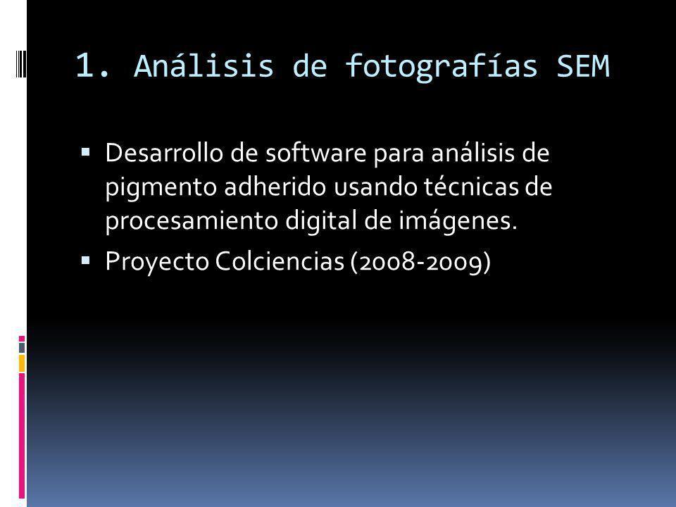 1. Análisis de fotografías SEM