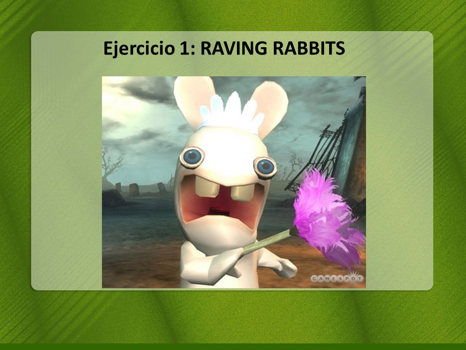 Ejercicio 1: RAVING RABBITS