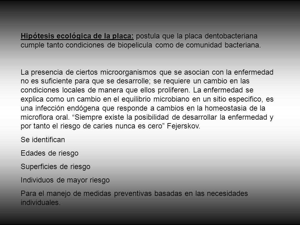 Hipótesis ecológica de la placa: postula que la placa dentobacteriana cumple tanto condiciones de biopelicula como de comunidad bacteriana.