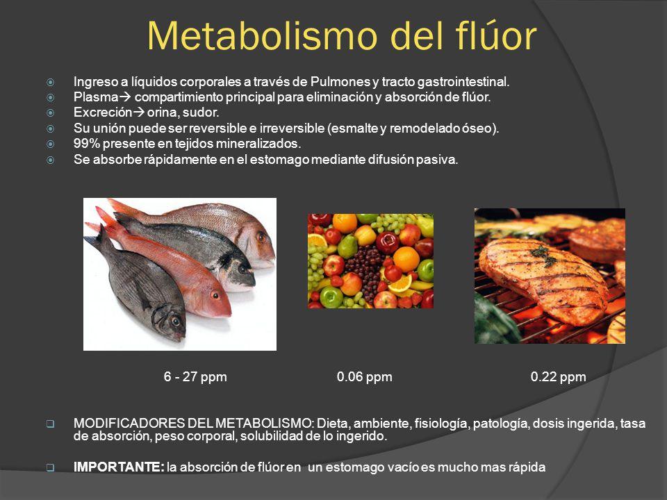 Metabolismo del flúor Ingreso a líquidos corporales a través de Pulmones y tracto gastrointestinal.