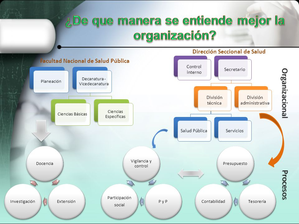 ¿De que manera se entiende mejor la organización