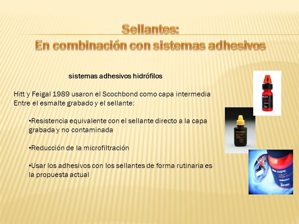 Sellantes: En combinación con sistemas adhesivos