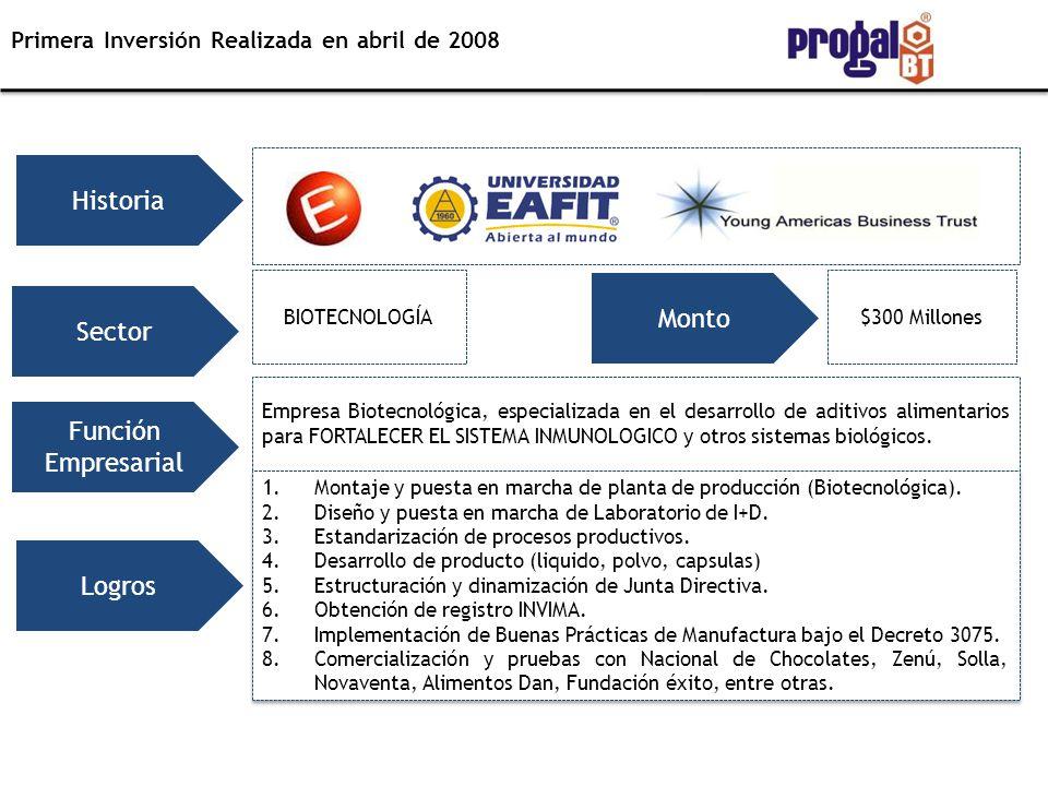 Historia Monto Sector Función Empresarial Logros