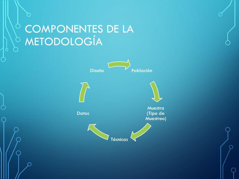 COMPONENTES DE LA METODOLOGÍA