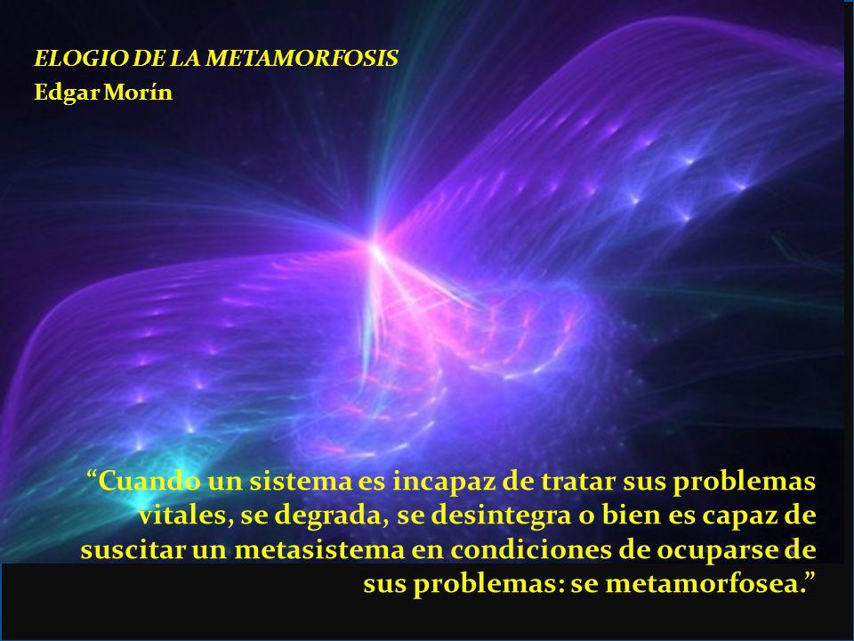 ELOGIO DE LA METAMORFOSIS