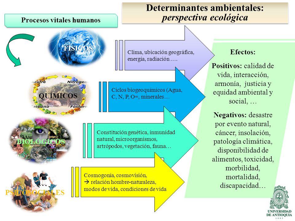Determinantes ambientales: perspectiva ecológica