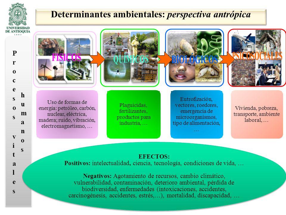 Determinantes ambientales: perspectiva antrópica