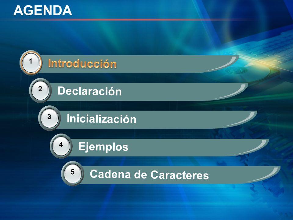 AGENDA Introducción Introducción Declaración Inicialización Ejemplos