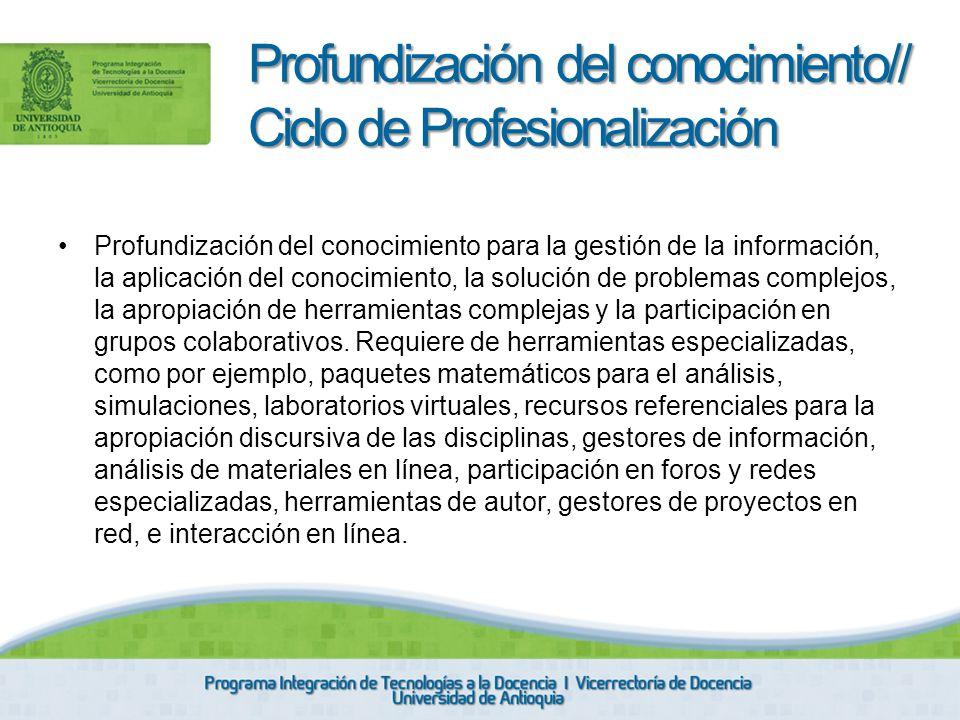 Profundización del conocimiento// Ciclo de Profesionalización