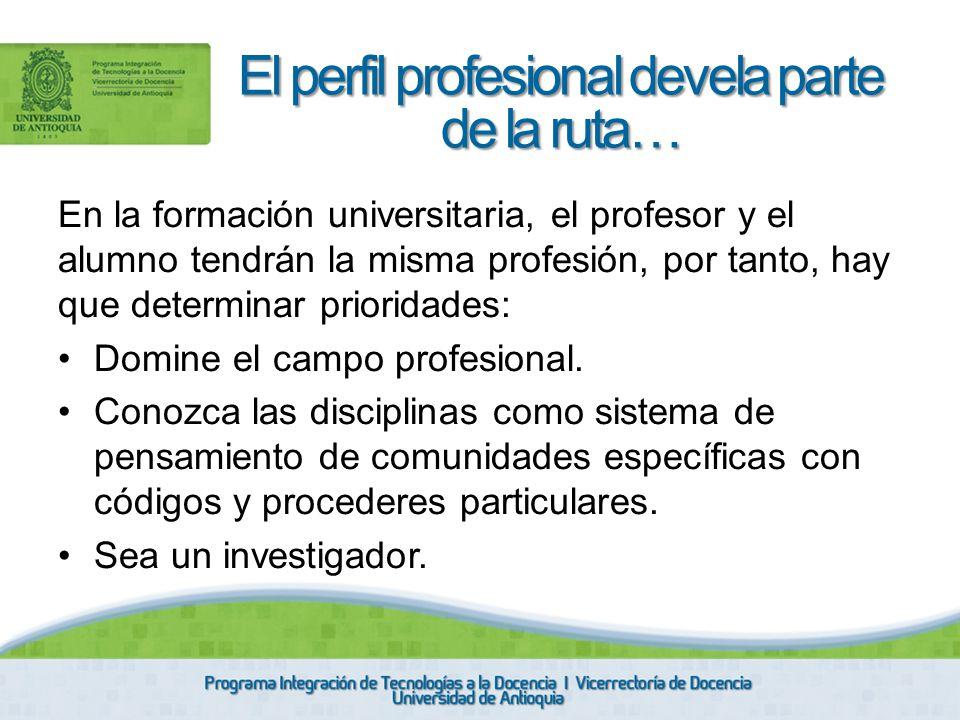 El perfil profesional devela parte de la ruta…