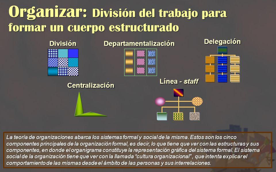 Organizar: División del trabajo para formar un cuerpo estructurado