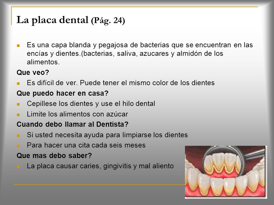 La placa dental (Pág. 24)