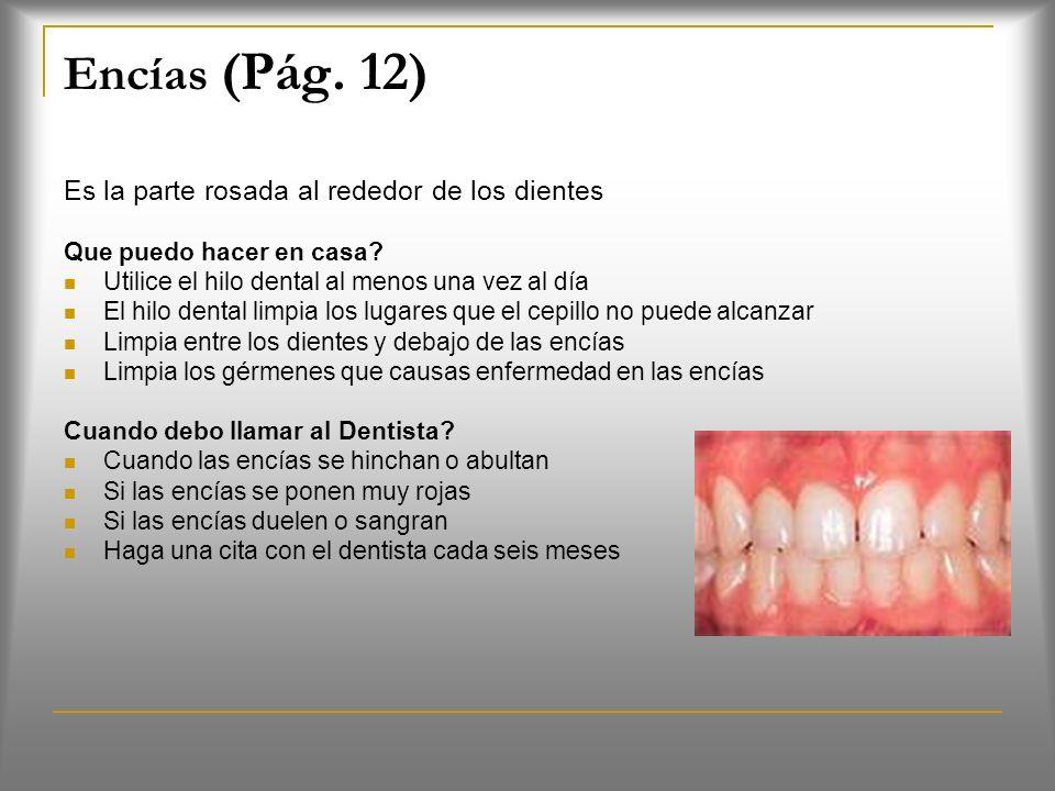 Encías (Pág. 12) Es la parte rosada al rededor de los dientes