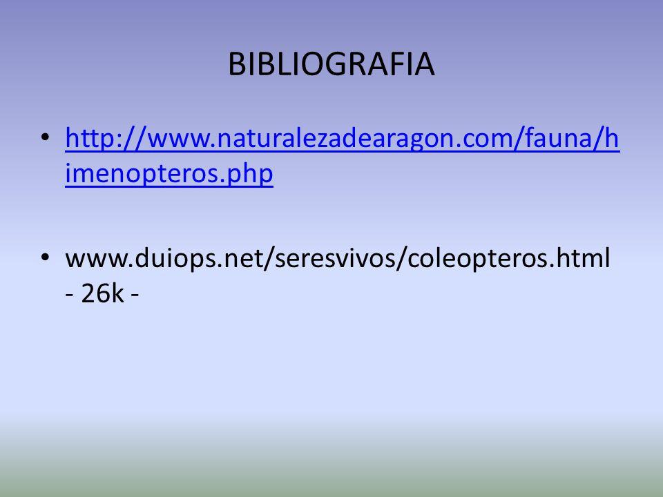 BIBLIOGRAFIA http://www.naturalezadearagon.com/fauna/himenopteros.php