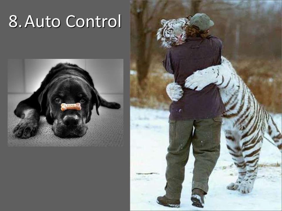 8. Auto Control