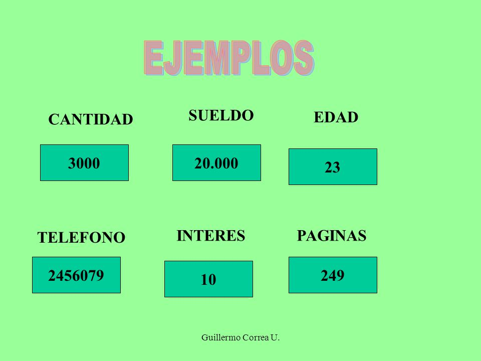 EJEMPLOS SUELDO CANTIDAD EDAD 3000 20.000 23 TELEFONO INTERES PAGINAS