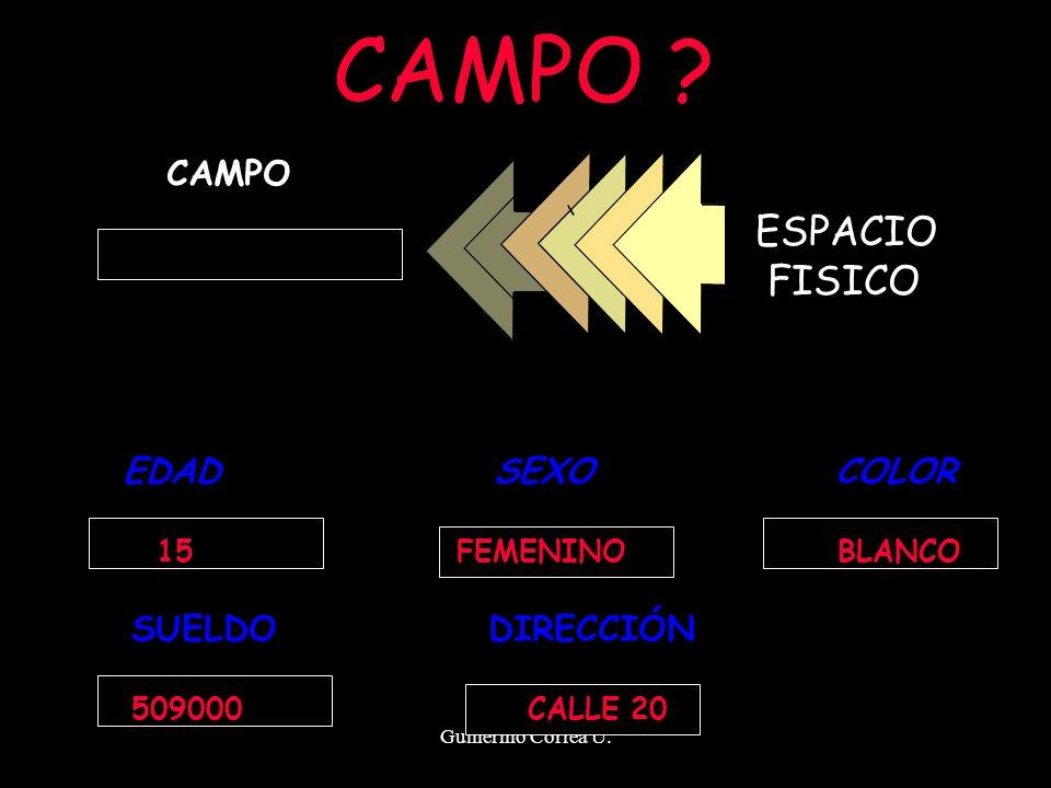 CAMPO ESPACIO FISICO CAMPO EDAD SEXO COLOR SUELDO DIRECCIÓN