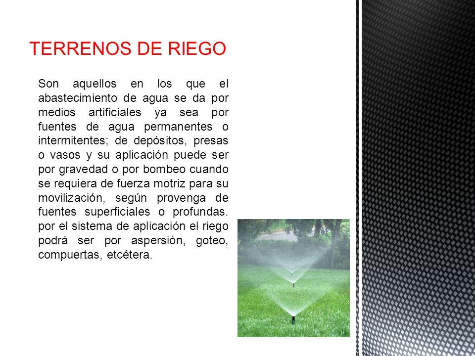 TERRENOS DE RIEGO