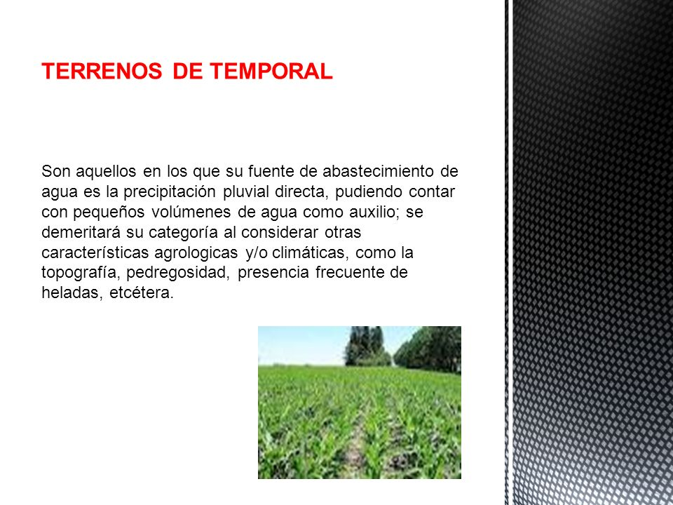 TERRENOS DE TEMPORAL