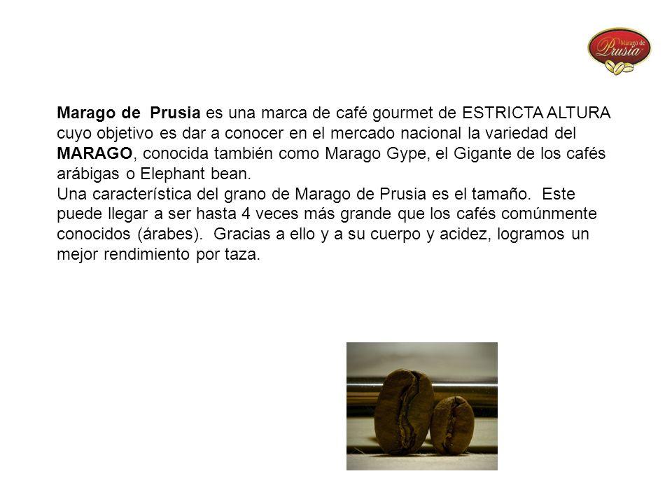 Marago de Prusia es una marca de café gourmet de ESTRICTA ALTURA