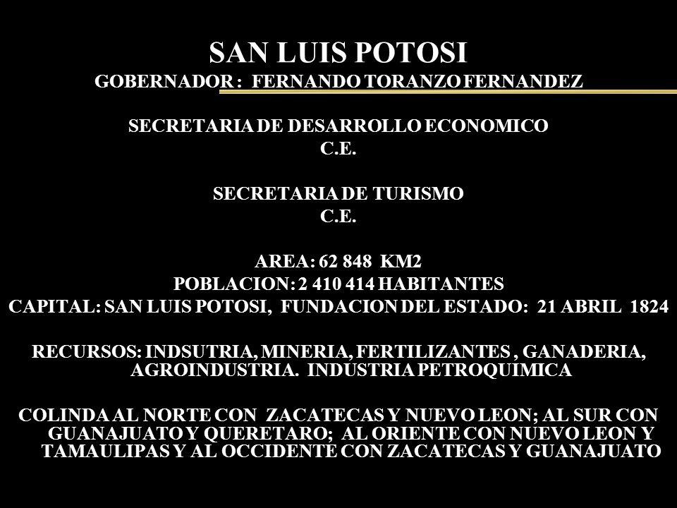 SAN LUIS POTOSI GOBERNADOR : FERNANDO TORANZO FERNANDEZ