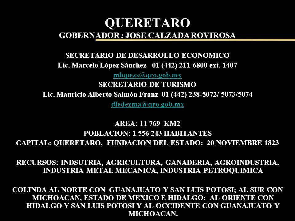 QUERETARO GOBERNADOR : JOSE CALZADA ROVIROSA