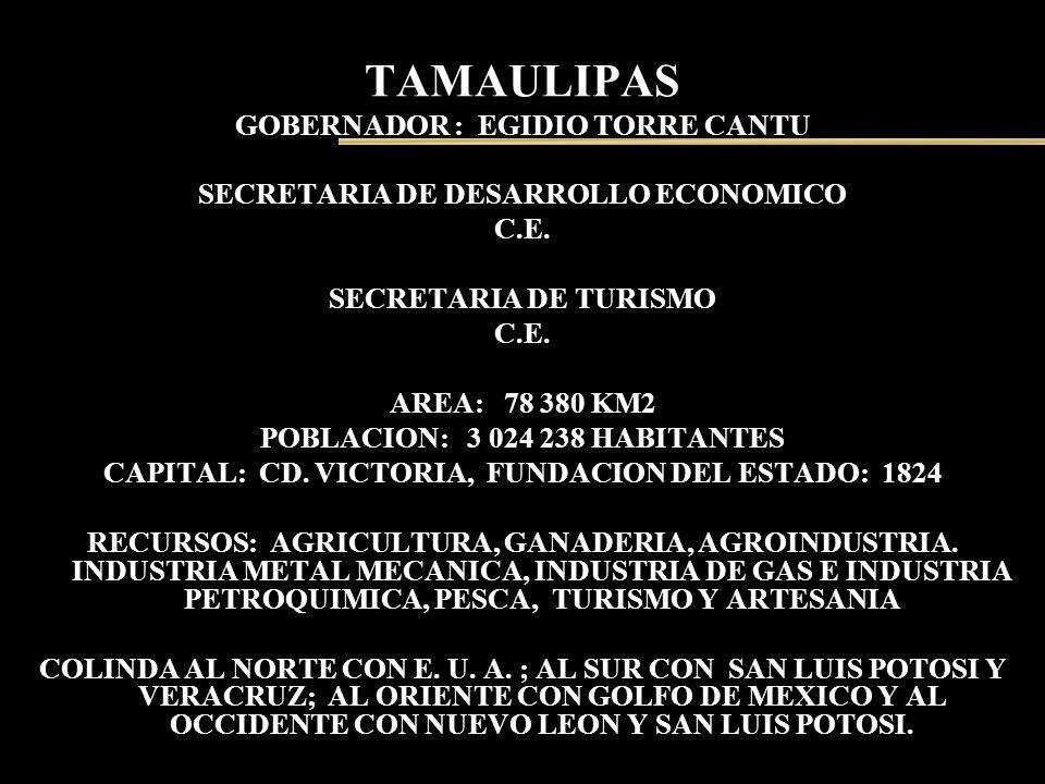 TAMAULIPAS GOBERNADOR : EGIDIO TORRE CANTU