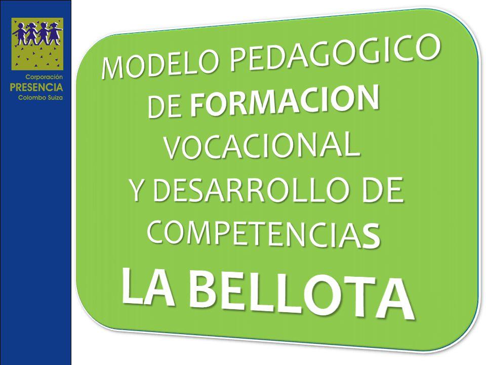 MODELO PEDAGOGICO DE FORMACION VOCACIONAL