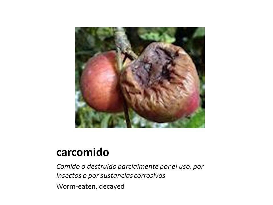 carcomido Comido o destruido parcialmente por el uso, por insectos o por sustancias corrosivas.