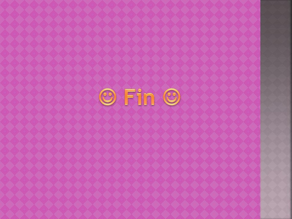  Fin 