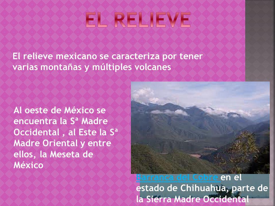 EL RELIEVE El relieve mexicano se caracteriza por tener varias montañas y múltiples volcanes.