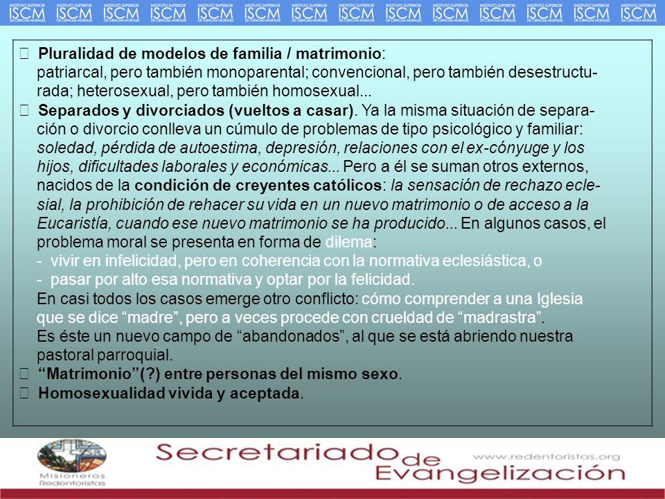 Pluralidad de modelos de familia / matrimonio: patriarcal, pero también monoparental; convencional, pero también desestructu- rada; heterosexual, pero también homosexual...
