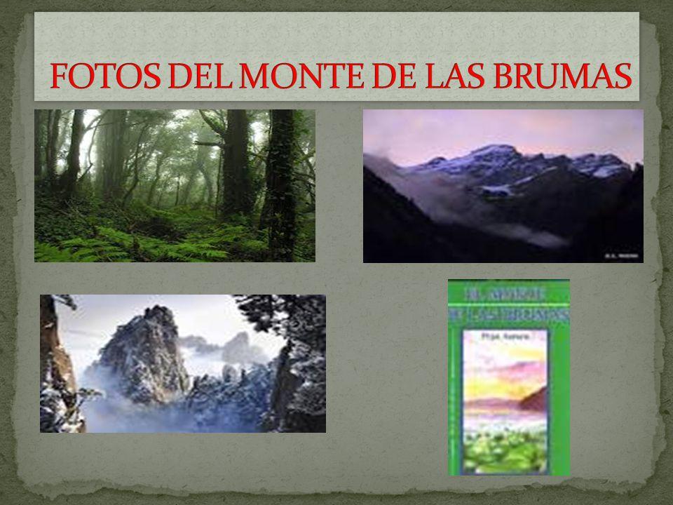 FOTOS DEL MONTE DE LAS BRUMAS