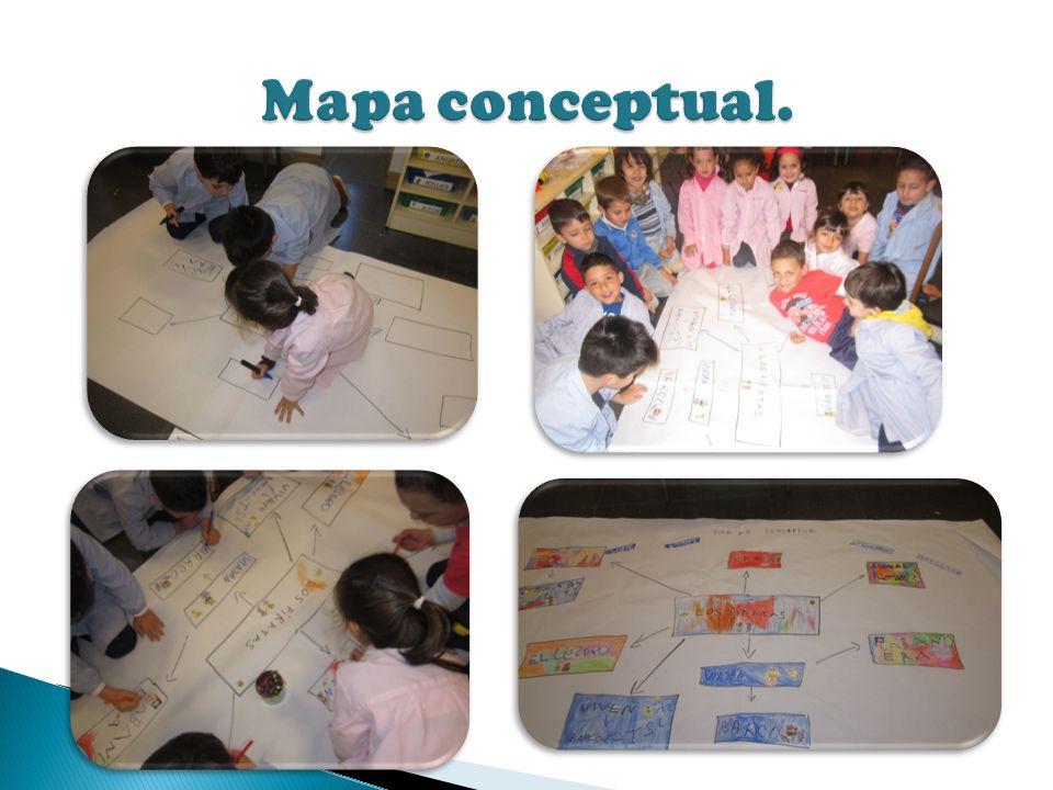 Mapa conceptual.