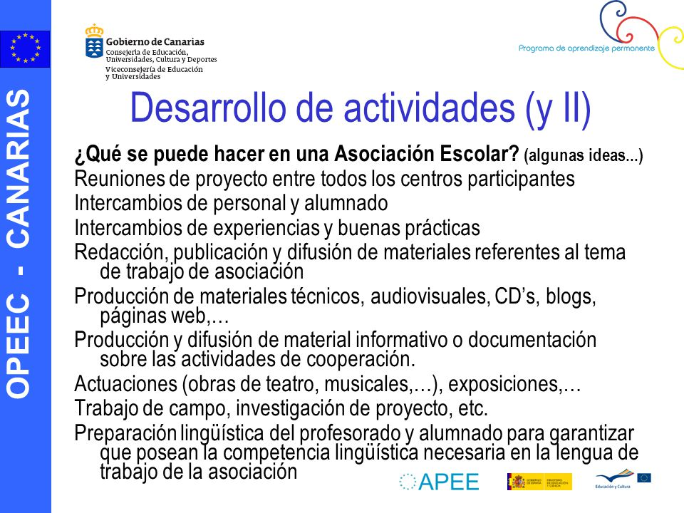 Desarrollo de actividades (y II)