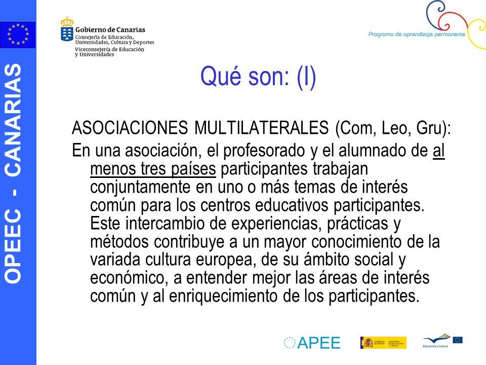 Qué son: (I) ASOCIACIONES MULTILATERALES (Com, Leo, Gru):