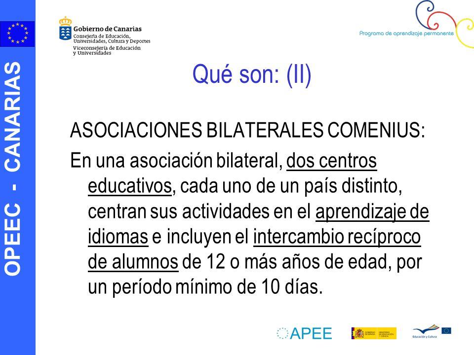 Qué son: (II) ASOCIACIONES BILATERALES COMENIUS: