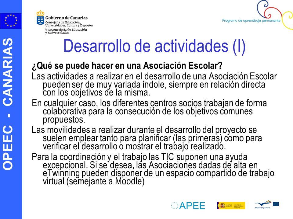 Desarrollo de actividades (I)