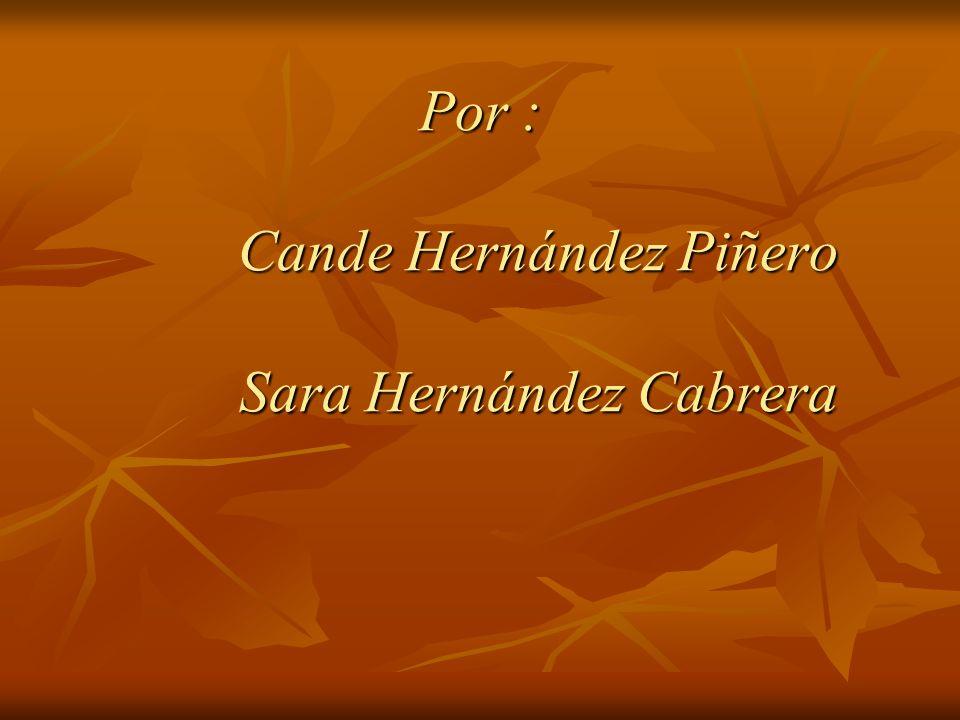 Por : Cande Hernández Piñero Sara Hernández Cabrera