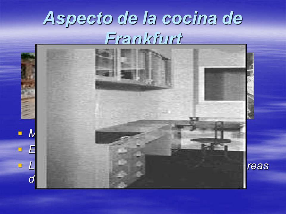 Aspecto de la cocina de Frankfurt