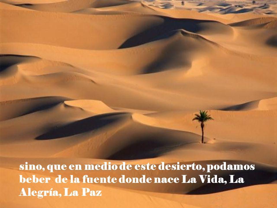 sino, que en medio de este desierto, podamos beber de la fuente donde nace La Vida, La Alegría, La Paz